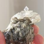 Коллекция образцов кальцитов и арагонитов